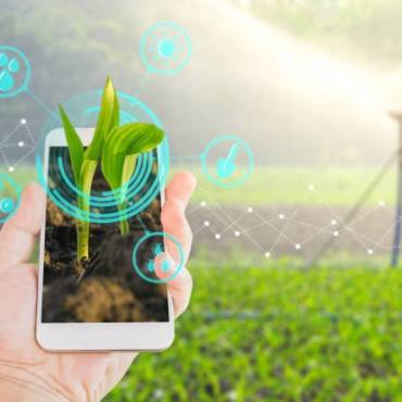 Cyber Security in Smart Agriculture